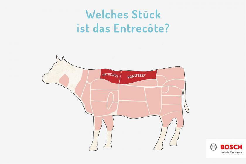 Grafik zur Lage des Entrecôte in der Kuh.